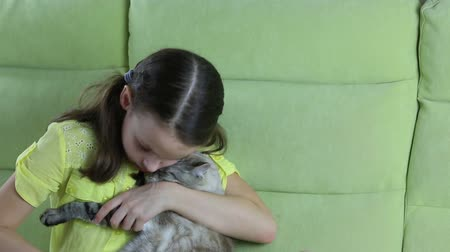 pleading : Beautiful little girl communicates with her beloved cat. Stock Footage