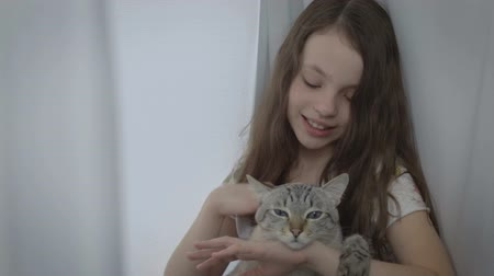 loved : Beautiful little girl gently communicates with your loved cat at window. Stock Footage