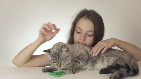 littlegirl : Beautiful cheerful teen girl with a cat playing with green fidget spinner on a white background stock footage video Stock Footage