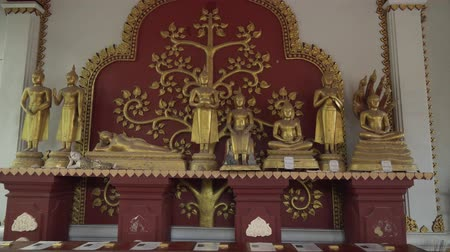 trumna : Koh Samui Island, Thailand - June 26, 2017: Temple Wat Khunaram with Mummy of a Buddhist monk Luang Pho Daeng on Koh Samui in Thailand stock footage video