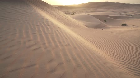 área de deserto : Beautiful Rub al Khali desert at sunrise United Arab Emirates stock footage video