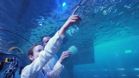 submerge : Dubai, UAE - April 09, 2018: Teenage girl with Dad admire the marine life in the glass tunnel of the Aquarium in Dubai Mall stock footage video