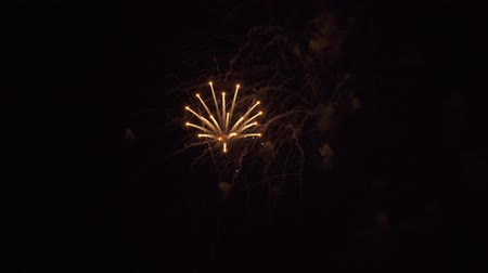 fiesta : Beautiful fireworks on a black sky stock footage video Stock Footage