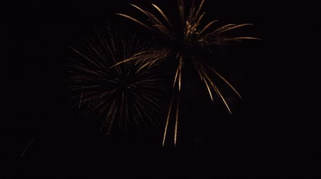 placeholder : Beautiful fireworks on a black sky stock footage video Stock Footage