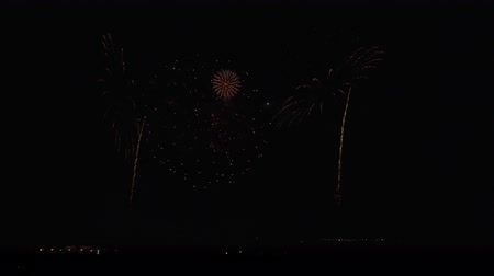artificial color : Colorful fireworks on the black sky background stock footage video