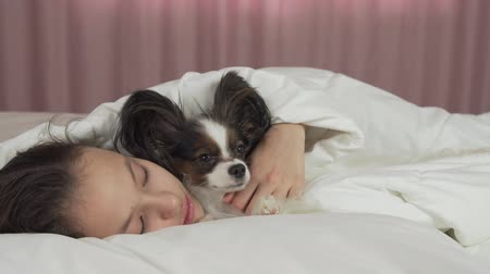 Happy teen girl communicates with dog Papillon in the bed stock footage video