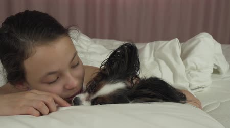 Happy teen girl kisses and plays with dog Papillon in the bed stock footage video