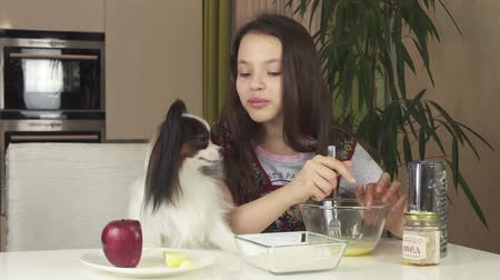континентальный : Teen girl and dog Papillon prepare cookies, knead the dough stock footage video Стоковые видеозаписи