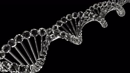 atomic model : Glass DNA Loopable 3D Animation
