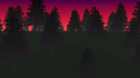 гот : Night forest and fog able to loop