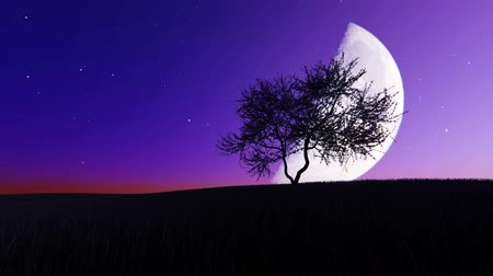holdfény : Moonrise on the background of a tree Stock mozgókép