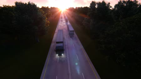 camionagem : Cargo delivery by large trucks Stock Footage