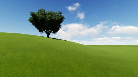 compelling : Single tree on grass field
