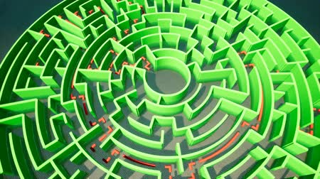 Green Maze on the background of water Stock Footage