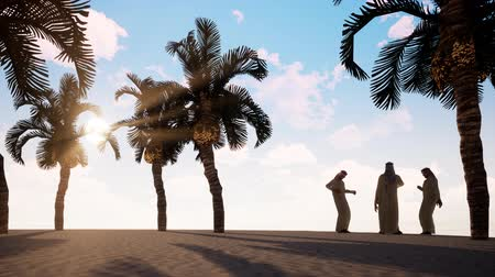 Four Arab men are talking on the beach with palm trees. Stock Footage