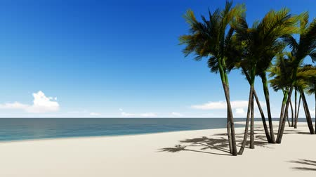 beach panorama : Tropical exotic island in ocean footage. Swaying palm trees in wind, breeze realistic animation. Paradise deserted island beach, coast and blue sky, seascape. Sea waves washing up shore 4k
