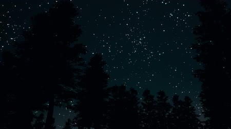 созвездие : Night clear starry sky in forest 3d realistic footage Стоковые видеозаписи
