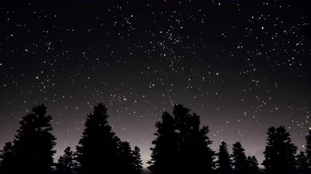 созвездие : Night starry sky and trees silhouettes panorama 3d realistic footage