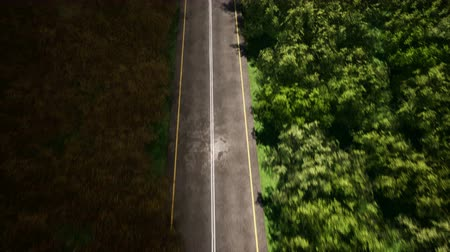 estreito : Forest road at rainy weather aerial view 3d realistic footage Stock Footage
