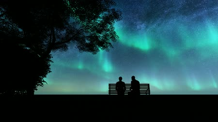 恋人 : Silhouettes lovers northern lights Beautiful illustration on dark backdrop. Night landscape. Romantic illustration. Night sky. Starlight night. Beautiful universe. 動画素材