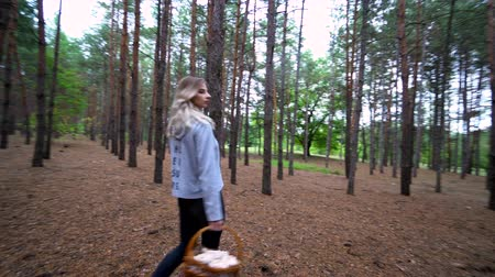 chill out : Beautiful walk in the forest. The girl went into the woods for mushrooms. Wild nature.