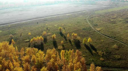 Észak amerika : flying over a wooded area, aerial view