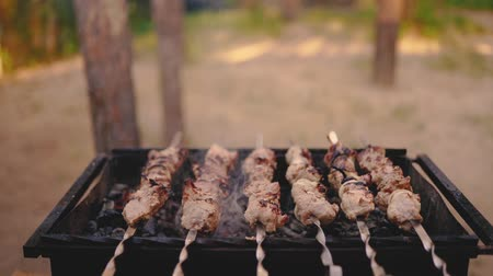 Raw kebab cooking on metal skewer. Roasted meat cooked at barbecue. BBQ fresh beef meat chop slices. Traditional eastern dish, shish kebab. Grill on charcoal and flame, picnic, street food Stockvideo