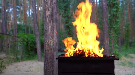 кемпинг : Fire in barbecue, kindling flame and conical fire burning apparatus. Slow motion.