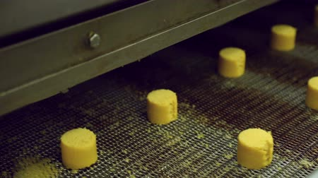 automatický : biscuits on the conveyor confectionery Dostupné videozáznamy