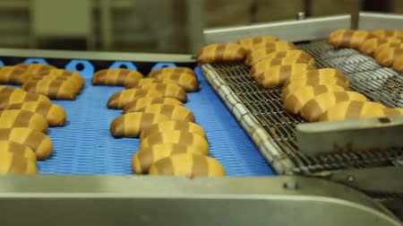 sugar loaf : confectionery factory produces glazed cookies