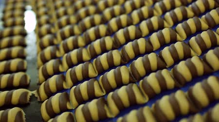 bochník : confectionery factory produces glazed cookies