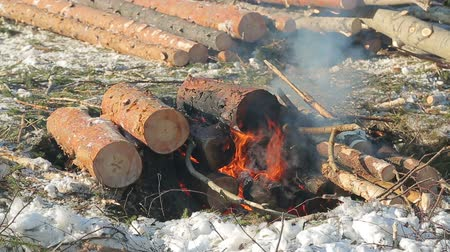 ás : loggers in the winter, warming themselves by the fire