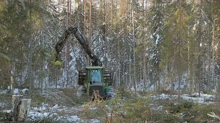 work skidder logging in winter Wideo