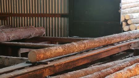 feeding and sawing logs at the sawmill 動画素材