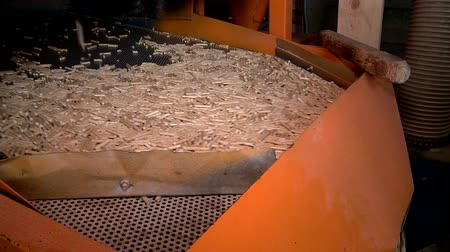 matter : pellet production at the timber processing enterprise Stock Footage