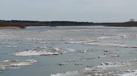 remendo : ice floes float on the river in the spring during the ice drift Stock Footage