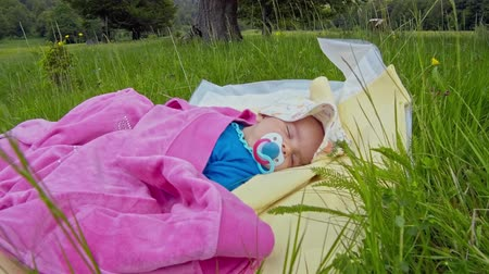 emzik : sleeping baby with pacifier, on green grass in a meadow in mountains