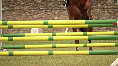rider with horse, jumping a hurdle. Equestrian Sports. Slow motion