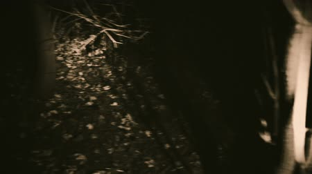 Ghost in the woods unexpectedly. Dramatic scene of horror. Stock Footage