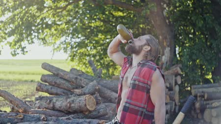 drwal : Woodsman or forester with a log pile and axe