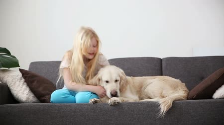 retriever : care for pets. A blonde girl strokes her dog with love in the living room. happy golden retriever in the family. Stock Footage