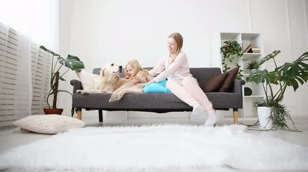 ковер : life of domestic pets in the family. mom and daughter stroked and hug a golden retriever on the couch in the living room. Стоковые видеозаписи