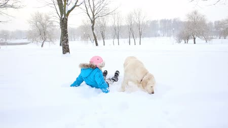 hugs : love for pets - the girl is resting with a golden retriever in the snow in the park Stock Footage