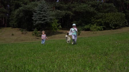 happy children and a beautiful dog running around the field over grass