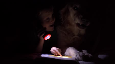 el feneri : happy life with pets - little boy at night reading a book under the covers with their big dog Stok Video
