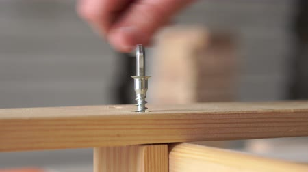 schroef : repair and decoration - building tools, self-tapping wooden furniture closeup
