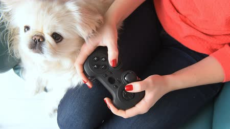 дичь : Young woman playing video game using a game pad.