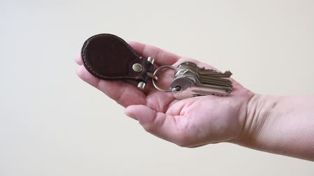 divorcement : Husband giving his wife home keys on a keyring. Close-up. Stock Footage