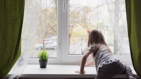 climbed : Little girl climbed onto the windowsill and looking out the window