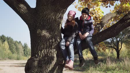 Happy children sitting on big tree and carefree swinging legs on autumn day